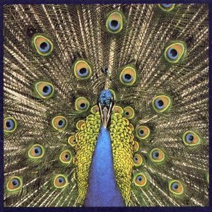 [중고] Bluetones / Expecting To Fly (수입CD)